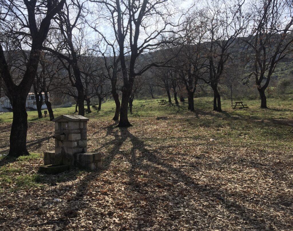 Στόχος η δημιουργία Μελισσοκομικού Πάρκου στην περιοχή του Καλλιθήρου